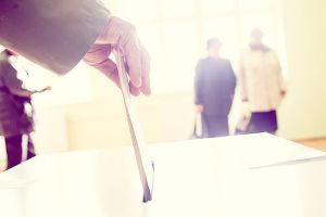 Demystifying Proxy Voting: How Do Institutional Investors Vote Shares?