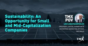 Sustainability: An Opportunity for Small and Mid-Capitalization Companies
